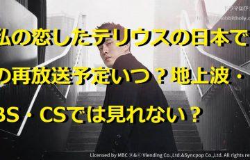 私の恋したテリウス 日本 再放送 予定 いつ 地上波 BS CS 見れない