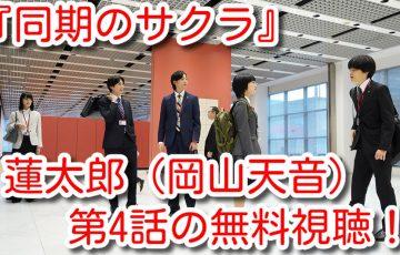 同期のサクラ 動画 4話 無料視聴 見逃し配信 9tsu パンドラ 詐欺 違法
