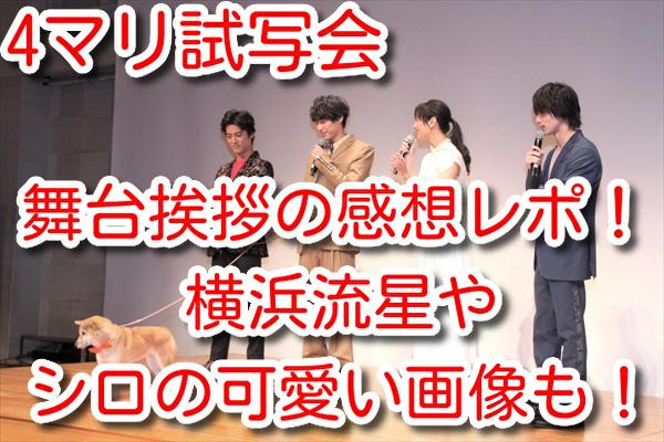 4マリ 試写会 舞台挨拶 感想 画像 横浜流星 シロ 可愛い