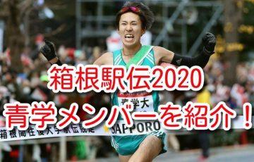 箱根駅伝 2019 青学 メンバー 成績 選手 順位 記録