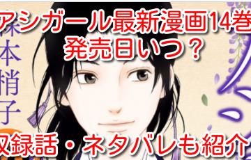 アシガール 最新刊 漫画 14巻 発売日 いつ