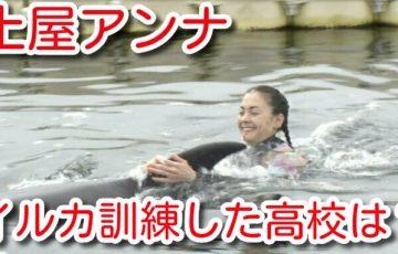 土屋アンナ イルカ 訓練 高校 場所 どこ 年間行事 学費 口コミ BACK TO SCHOOL!