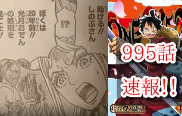 ワンピース 995話 ヤマト 最新話 確定 ネタバレ 速報 感想