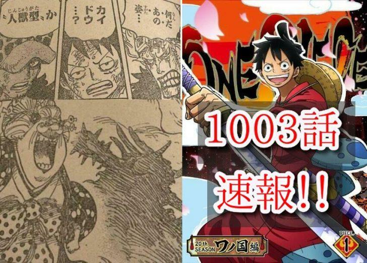 1003 ワンピース